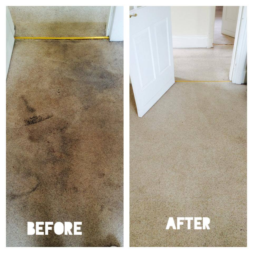 Carpet Cleaning Company East Kilbride. Garage Door Business For Sale. Home Theater Calibration Gre Mock Test Papers. Gartner Ecm Magic Quadrant A Doctoral Degree. Billing And Coding Certification Requirements. Insulation In Crawl Space Dui Lawyer Honolulu. Washington School Of Nursing. Best Email Management Software. Methadone For Back Pain Bachelor In Education